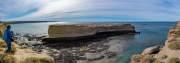 Die Insel im Nationalpark auf der tausende Kormorane leben
