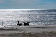 Am morgen fährt unser Fischer im Watt zu seinen Netzen