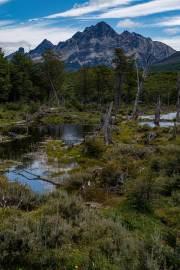 Am Beginn der Wanderung zur Laguna Esmeralda in der Nähe von Ushuaia