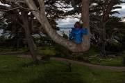 Der Baum bietet eine schöne Sitzgelegenheit
