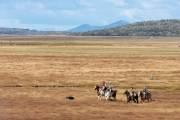Mitten in der weiten Pampa