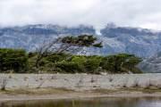 Am Ufer des Fjordes bei Caleta Maria