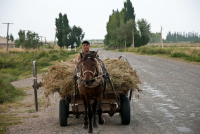 2010.09.01 17.21.57 Kirgistan 069